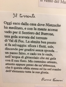 Nietzsche_Sils-Maria_Fasani_thumb_6803