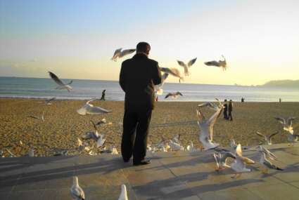 man-feeding-the-seagulls-on-haeundae-beach-busan